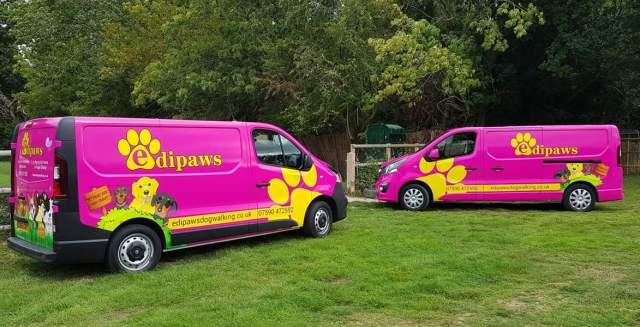 The Vans